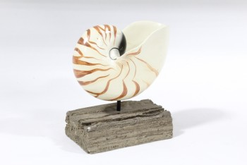 Science/Nature, Shell, SPIRAL SHELL ON BROWN WOOD BASE, WOOD, OFFWHITE