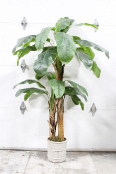 Plant, Fake, FAKE LEAVES & TRUNKS, APPROX 5-6', LIGHT COLOURED PLANTER, PLASTIC, GREEN