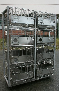 Cage, Laboratory, UNIT W/8 MEDIUM SIZED LAB ANIMAL CAGES, ROLLING , STAINLESS STEEL, SILVER