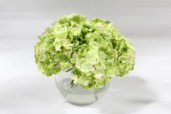 "Plant, Fake, REALISTIC SILK GREEN FLOWERS, HYDRANGEAS, PERMANENT FLORAL ARRANGEMENT IN 6"" CLEAR GLASS VASE, TOTAL HT APPROX 12"", SILK, GREEN"