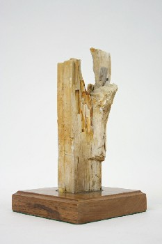 Science/Nature, Wood, PETRIFIED WOOD ON SQ WOOD BASE , WOOD, BROWN